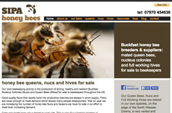 Sipa Honey Bees website